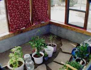 attached greenhouse, greenhouse kits, greenhouse, lean to greenhouse, lean to greenhouse kits, lean to greenhouses