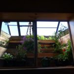greenhouse glazing,greenhouse structures,hobby greenhouses,garden window greenhouse, window well