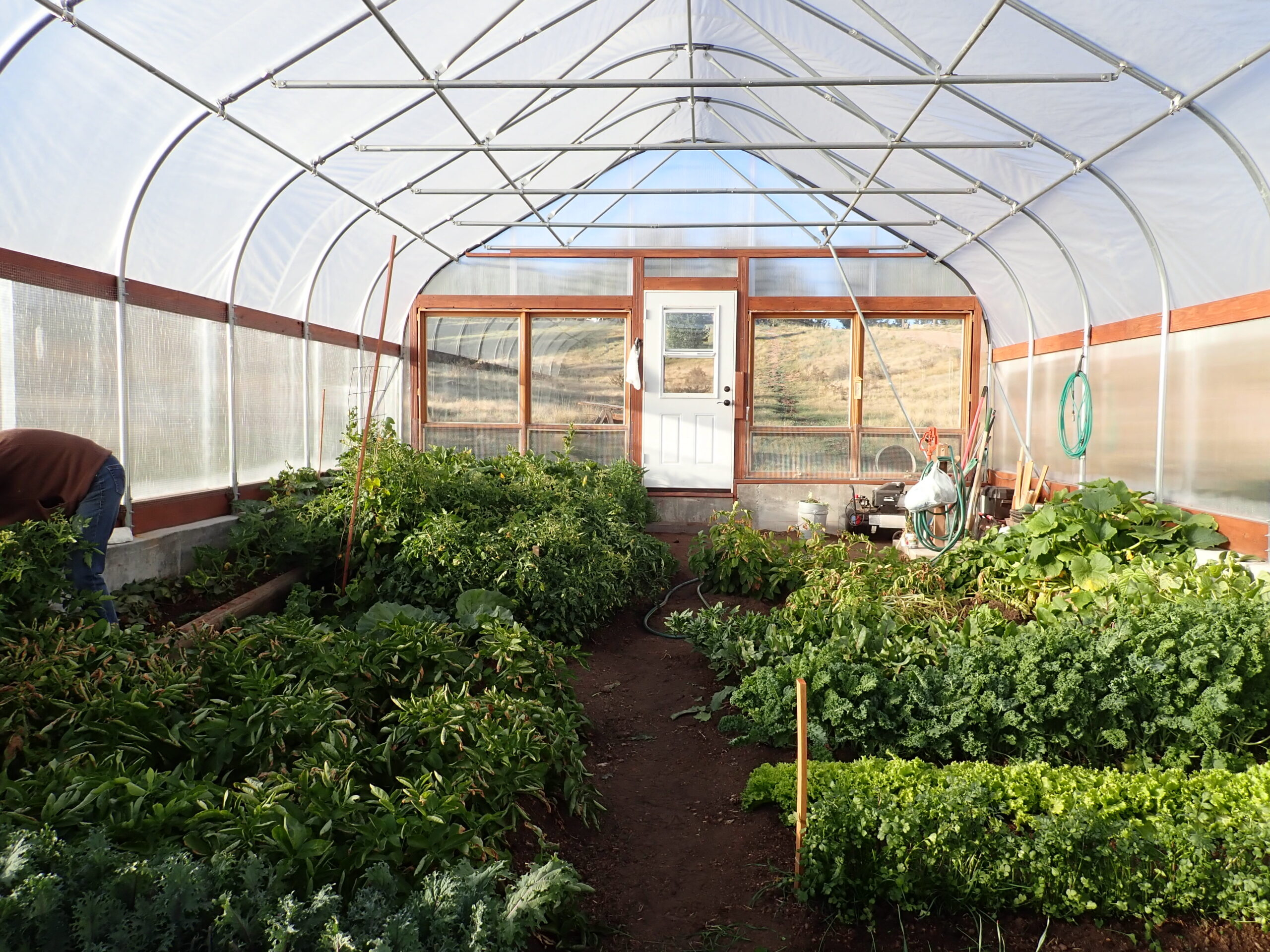 Colorado greenhouses,greenhouse,greenhouses,greenhouse kits,greenhouse contractor
